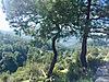 Doğa ile iç içe panoramik doğa manzaralı arazi - Satılık Arsa İlanları sahibinden.com'da