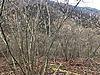 Kuyumculu Köyü Satılık Arsa