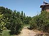 Bahçelievler Mh. Satılık Arsa