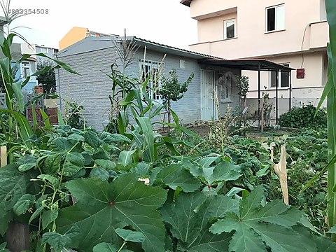Tek katlı bahçe evi satılık acil