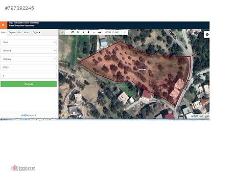 BORNOVA GÖKDERE'DE 6,846 m2 SATILIK ZEYTİNLİK TARLA