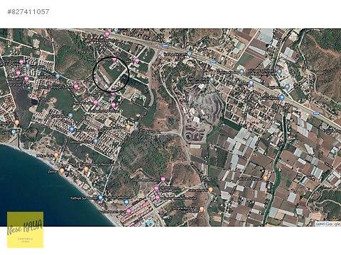 Fethiye Koca Çalışta 1.950 m2 %10 İmarlı Arsa