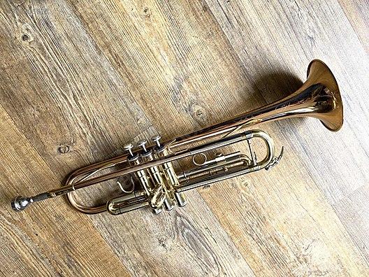 https www sahibinden com listing ikinci el ve sifir alisveris muzik muzik aletleri sml paris tp600 bb trompet 873705816 detail