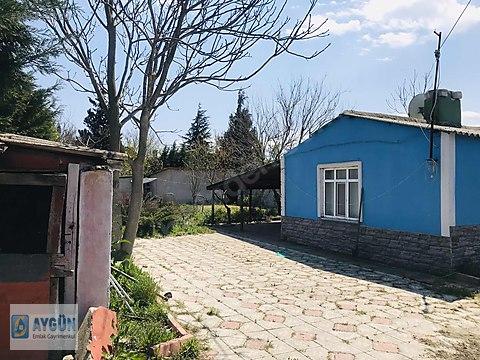 KAPAKLI UZUNHACI'DA FİYAT DÜŞTÜ ACİL MUSTAKİL SATILIK...